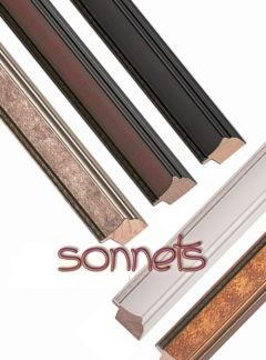 Sonnets Collection